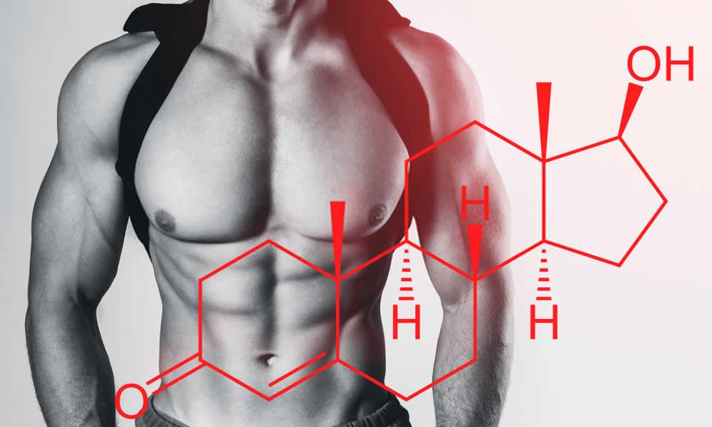 Como aumentar naturalmente a testosterona: Dicas dietéticas para melhorar a secreção e produção de hormônios masculinos